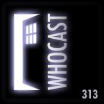 dwc313
